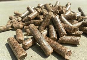 生物质燃料批发